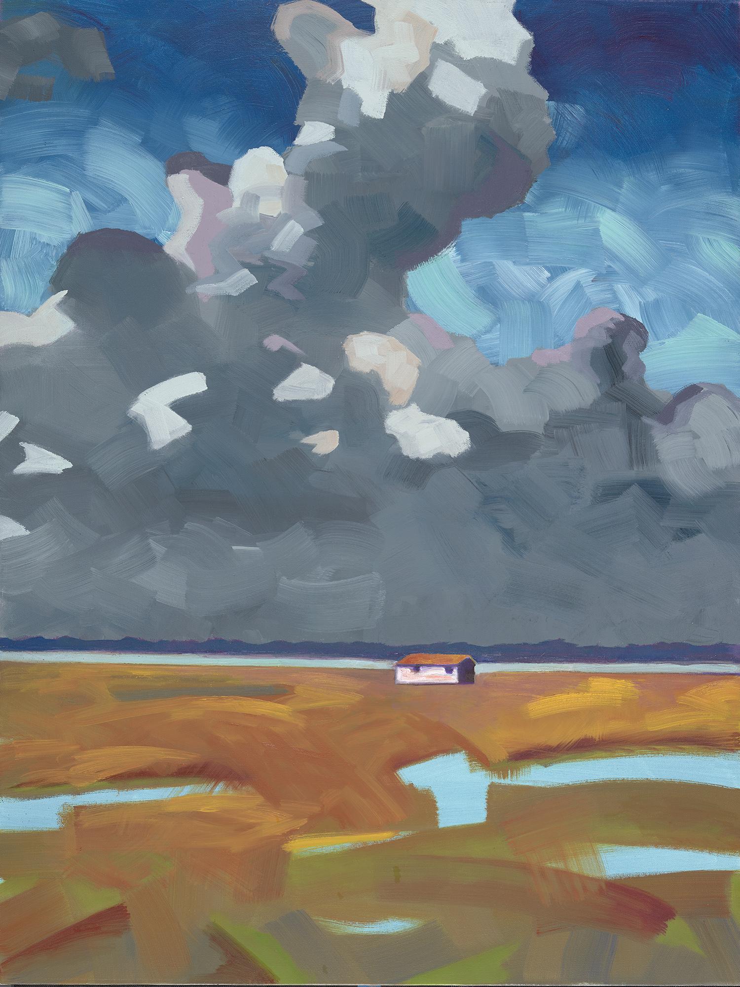 MarshHouse2 oil on canvas.40x30_.jpg