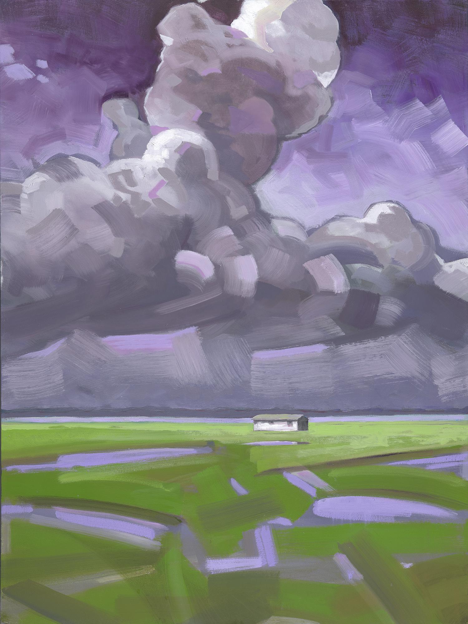 MarshHouse3 oil on canvas.40x30_.jpg