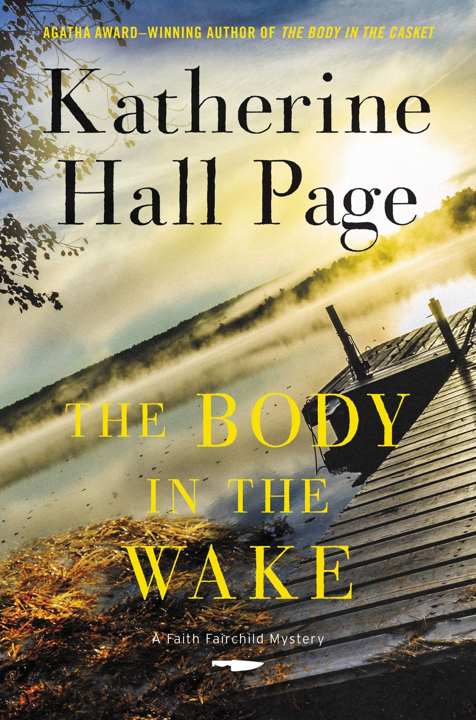 Page, THE BODY IN THE WAKE, US cover.jpg