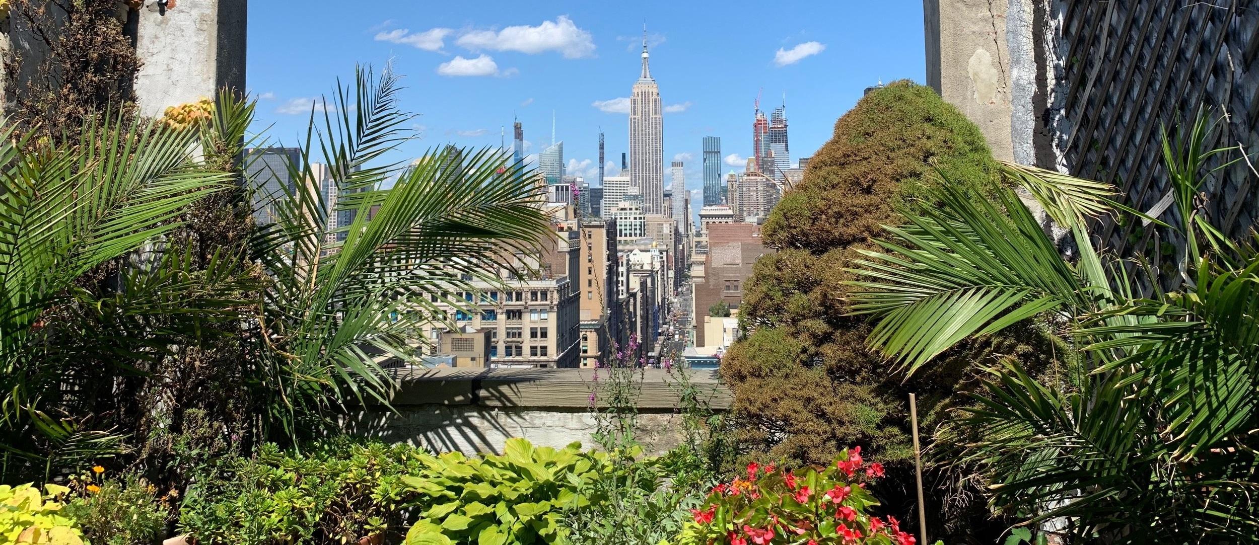 Rooftop Garden at Greenburger Associates