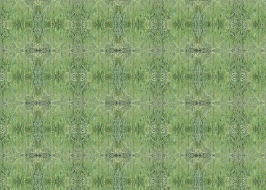 mares tail fabric.jpg