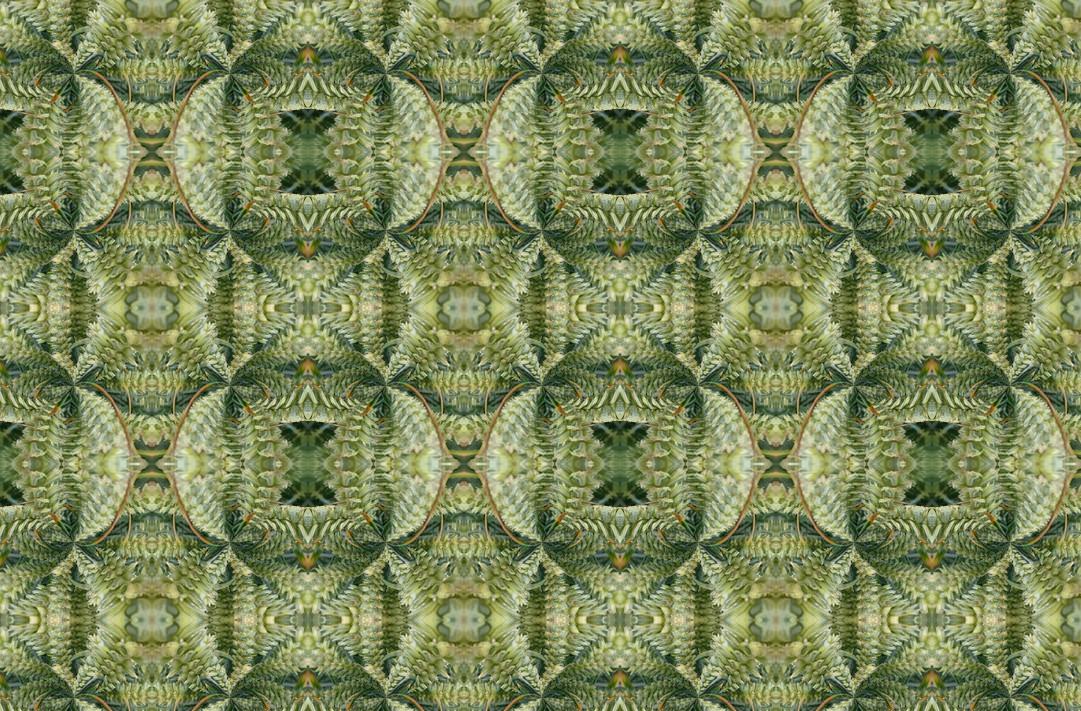 harvest fabric.jpg