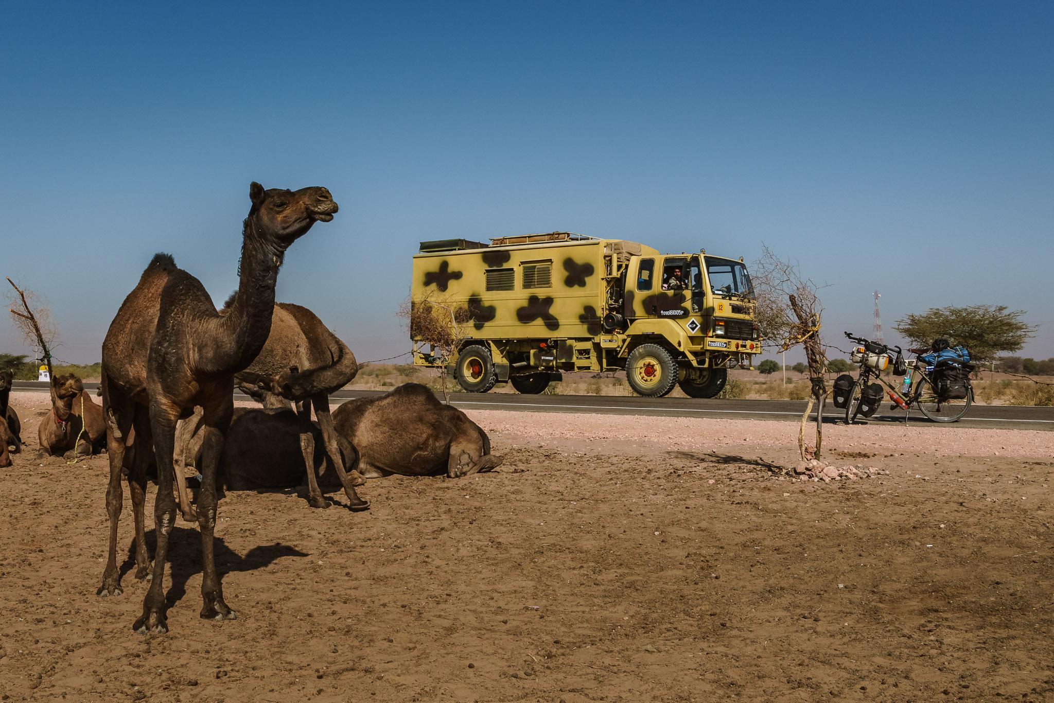 India-pokhran-camel-farmer-6.jpg
