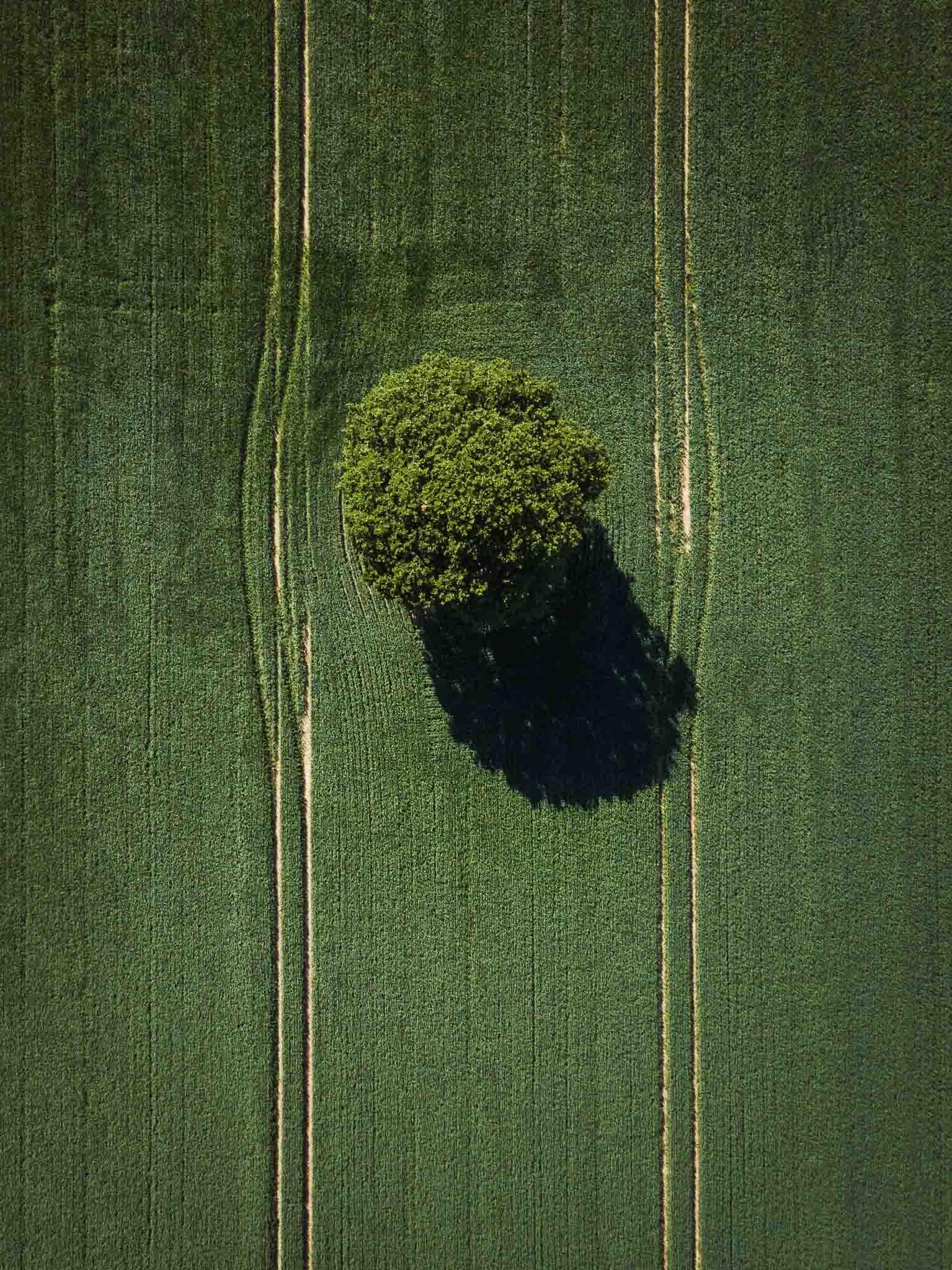website-portfolio-aerial-11.jpg