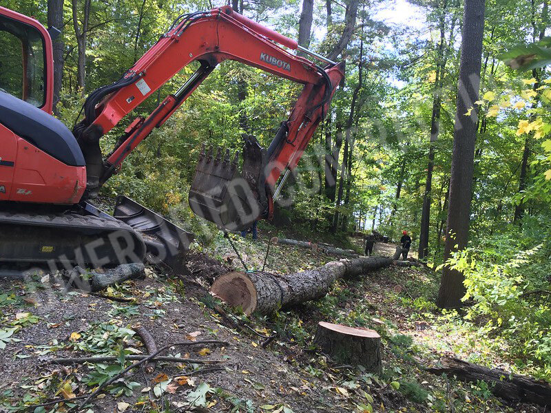 25-keuka-remodeling-wood-interior-land-clearing-tree-removal.jpg