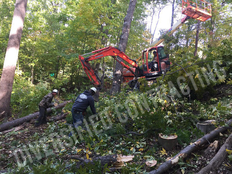 27-keuka-remodeling-wood-interior-land-clearing-tree-removal.jpg