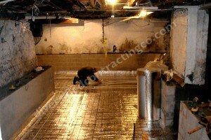 -Heated-Floors-Basement-Concret-local 8.jpg