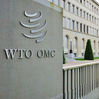 world trade organization hq  the common good