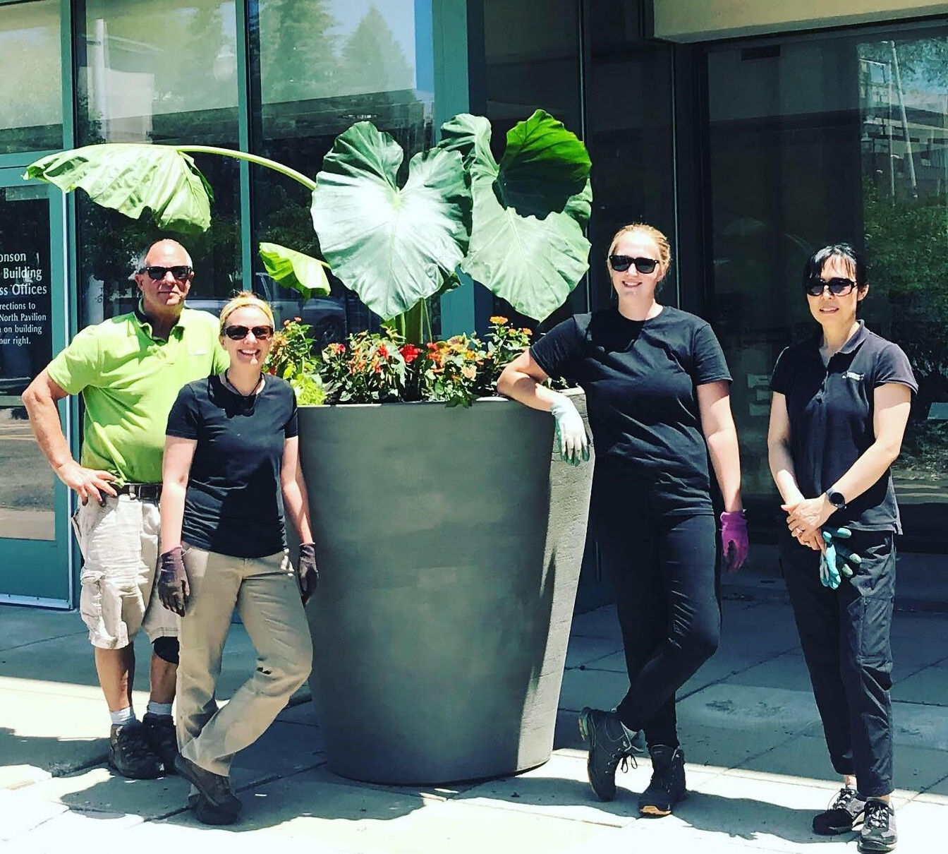 A few of our incredible plant techs; Paul, Jen, Sam and Hwaja installing the summer containers.