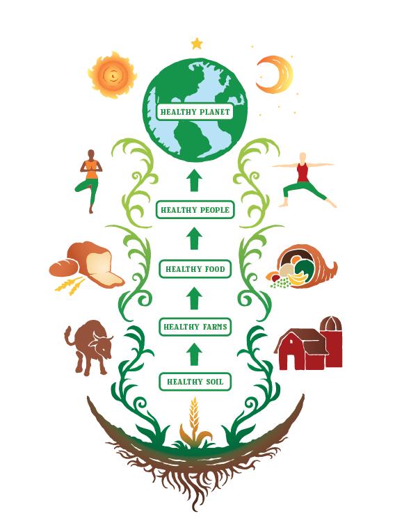 Infographic V1.png