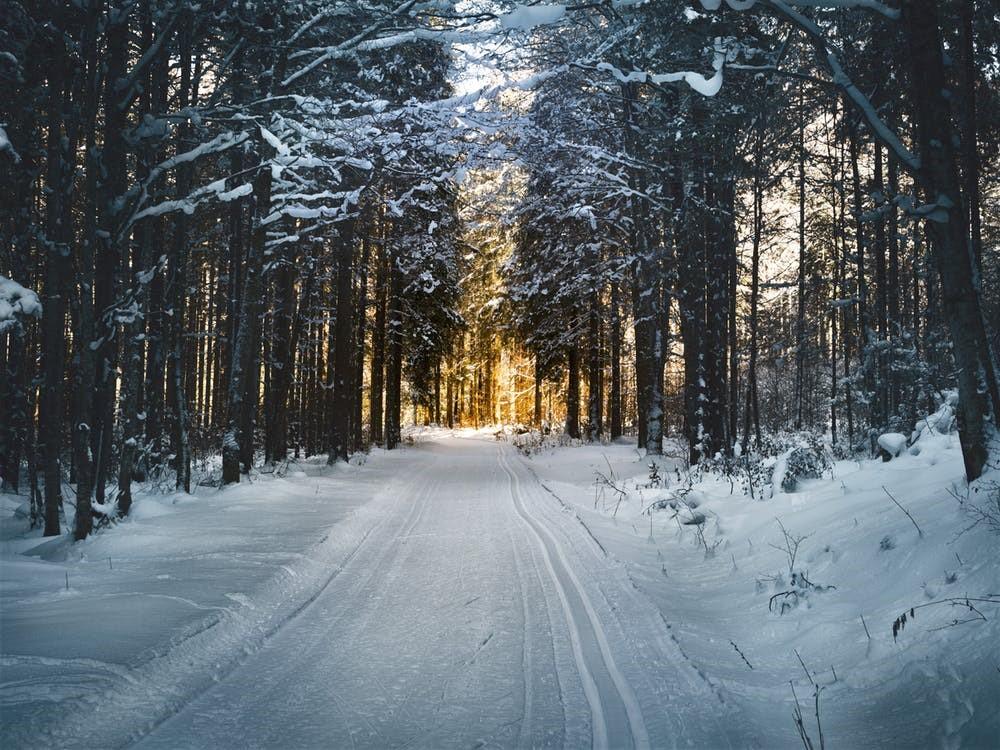 MAVERICK-Winter.jpg