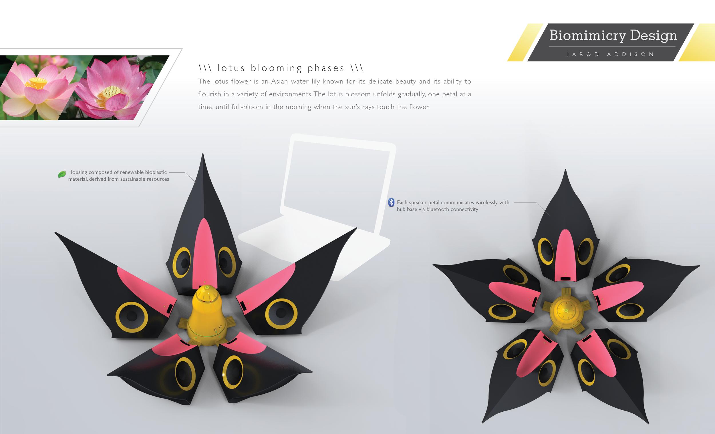 xDRAFTx_lotus layout-04.png