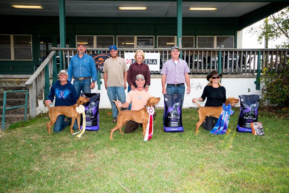2016 US central vizSLA ASSOCIATION DERBY BENELLI 2nd runner up