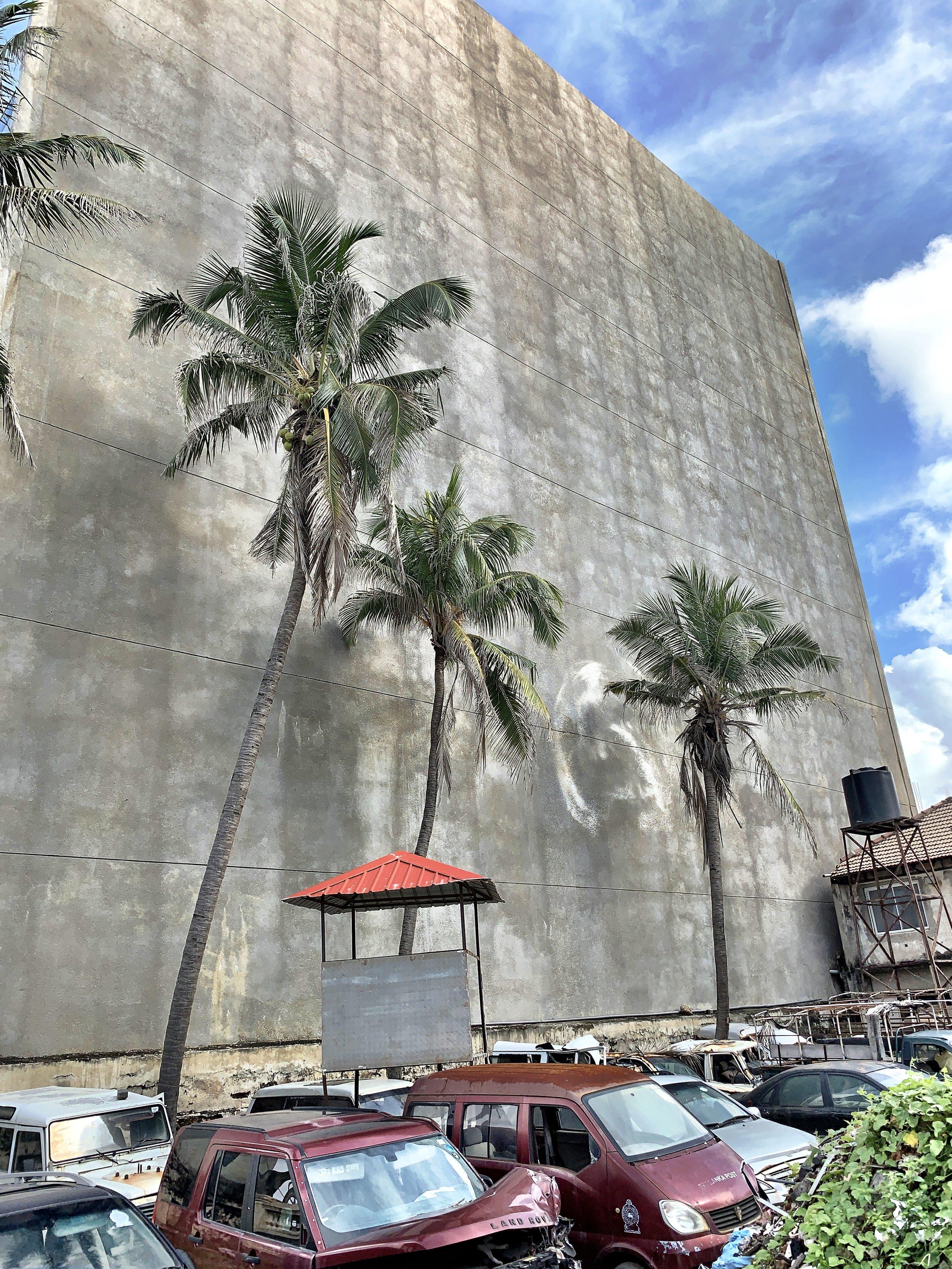 Colombo kleine Grosstadt mit Palmen.jpeg