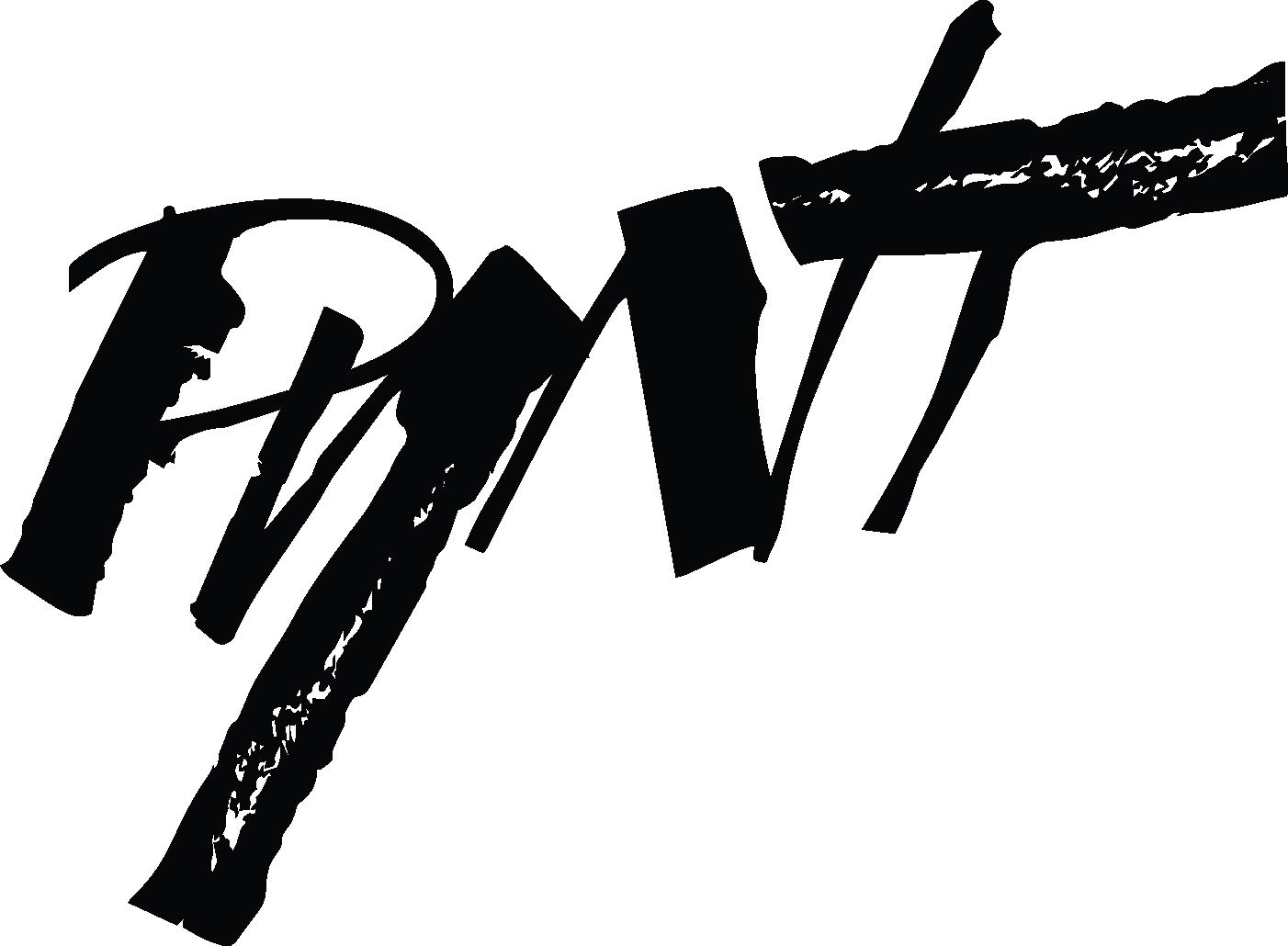 Pynt_logo.png
