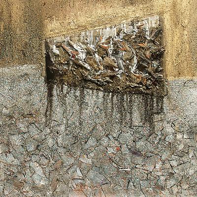 Janet Culbertson - environmental and nature-based mixed media work