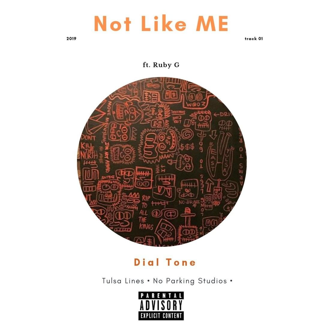 Not+Like+Me+Album+Cover