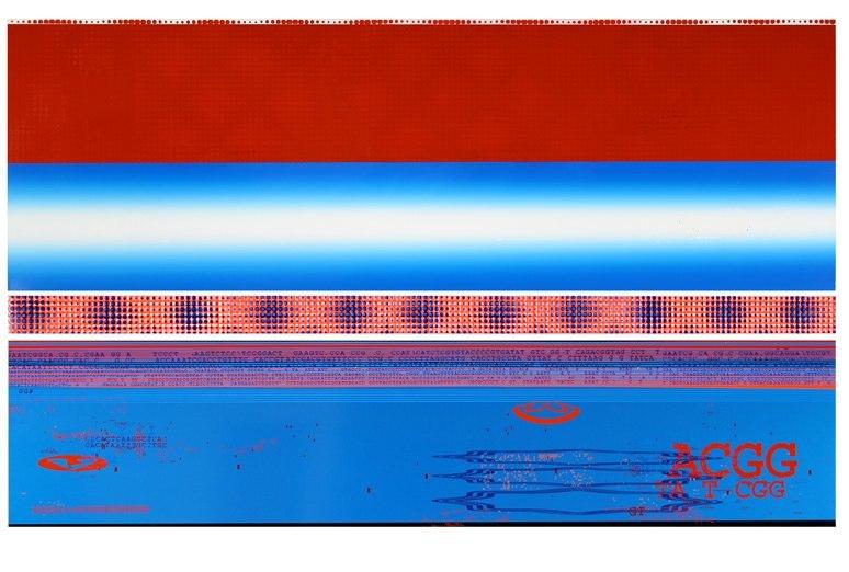 Dividose: RedWhiteBlue 2006/07