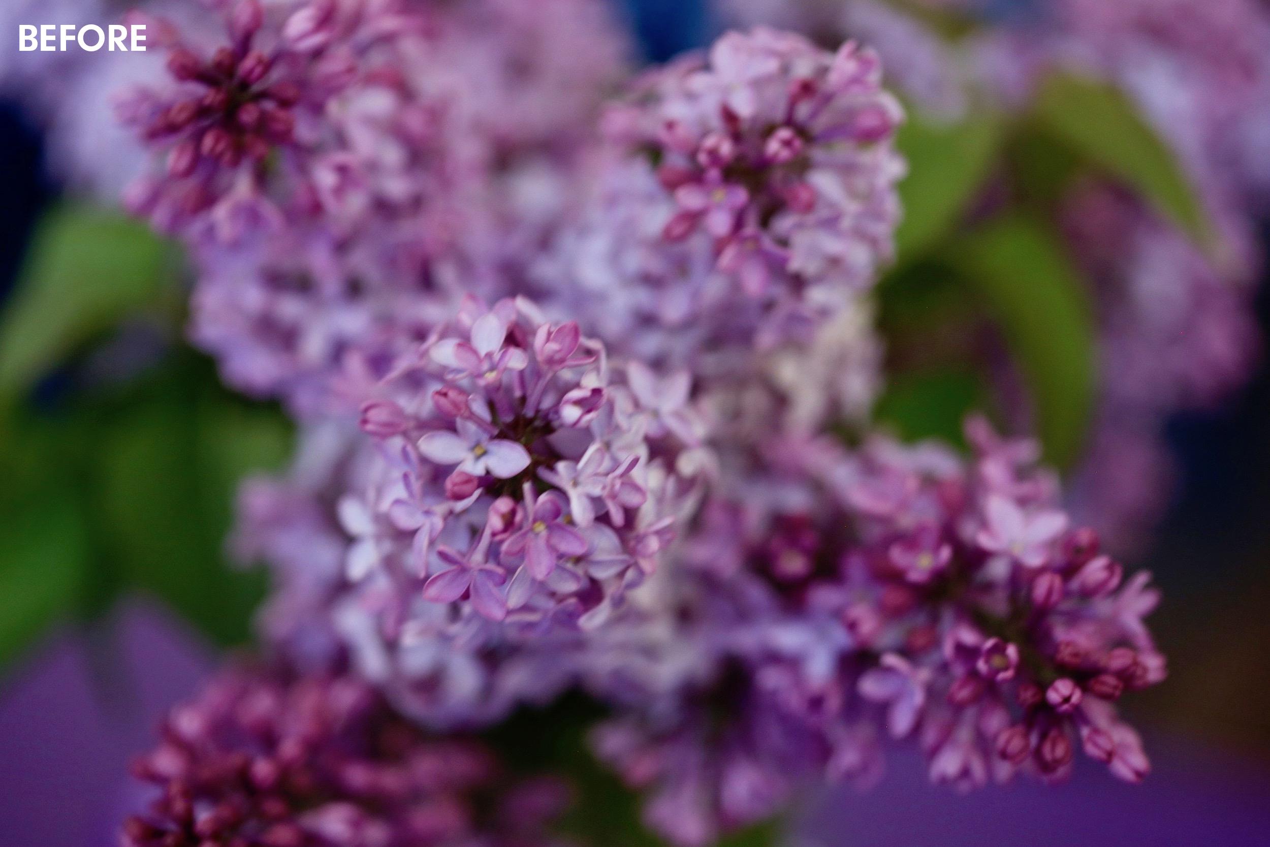 pink-flowerschickpeach-lightroom-presets3.jpeg