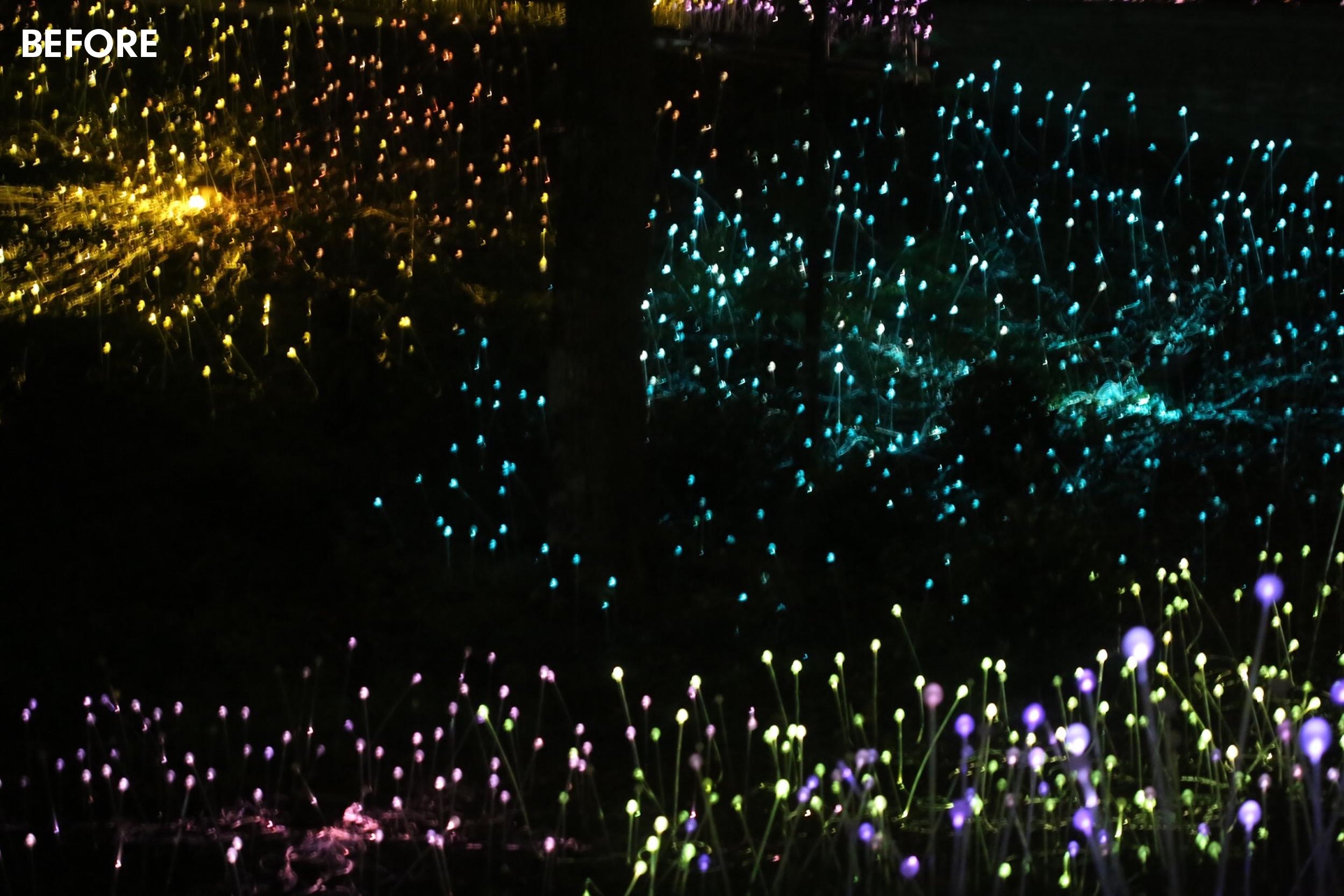 glowforest-atlantachickpeach-lightroom-presets12.jpg