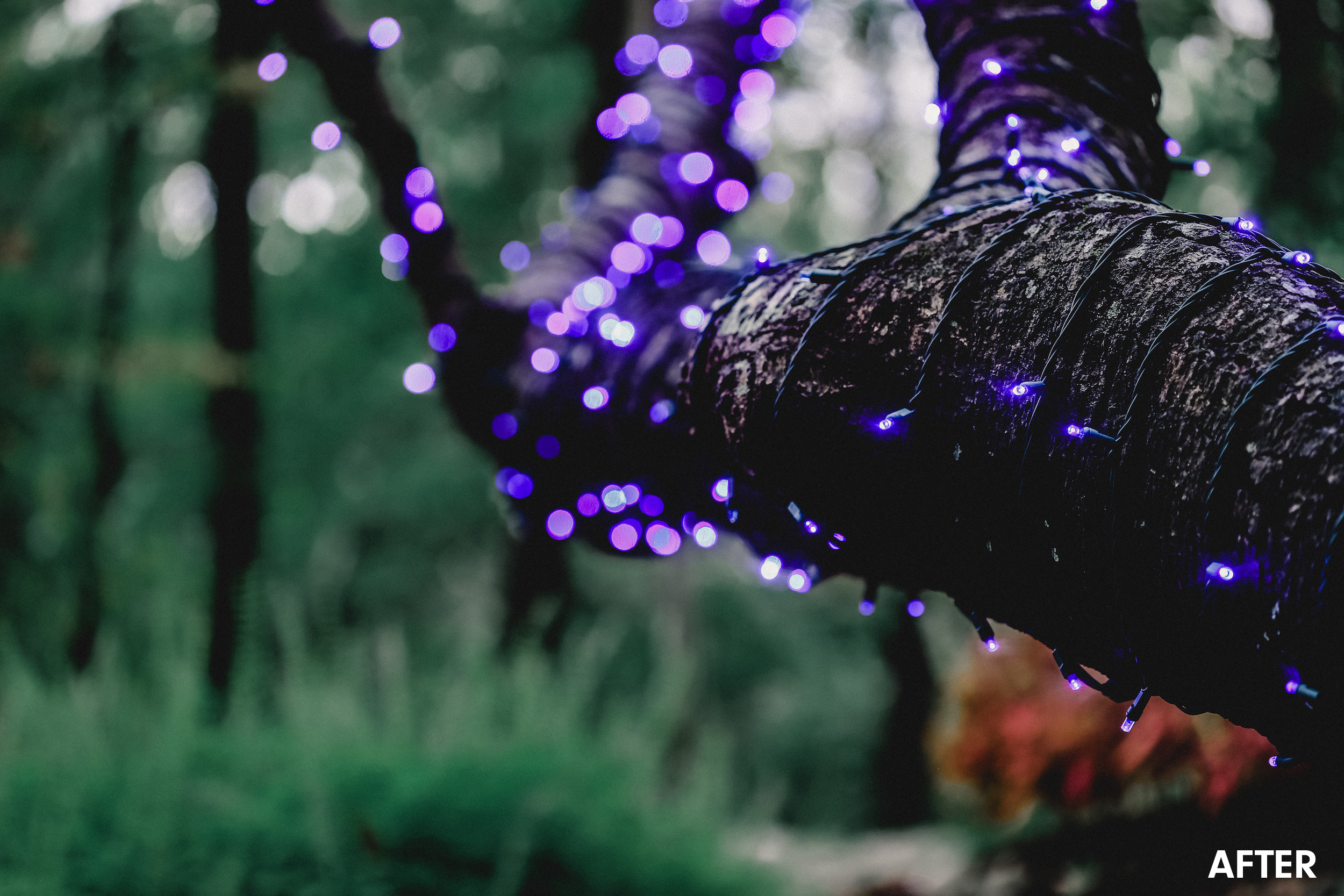 moody-purple-twinkle-lightschickpeach-lightroom-presets9.jpg