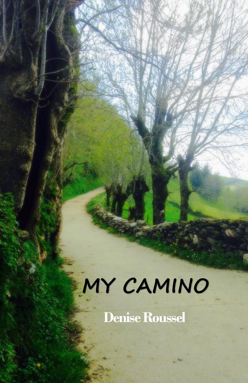 7i My Camino.jpg