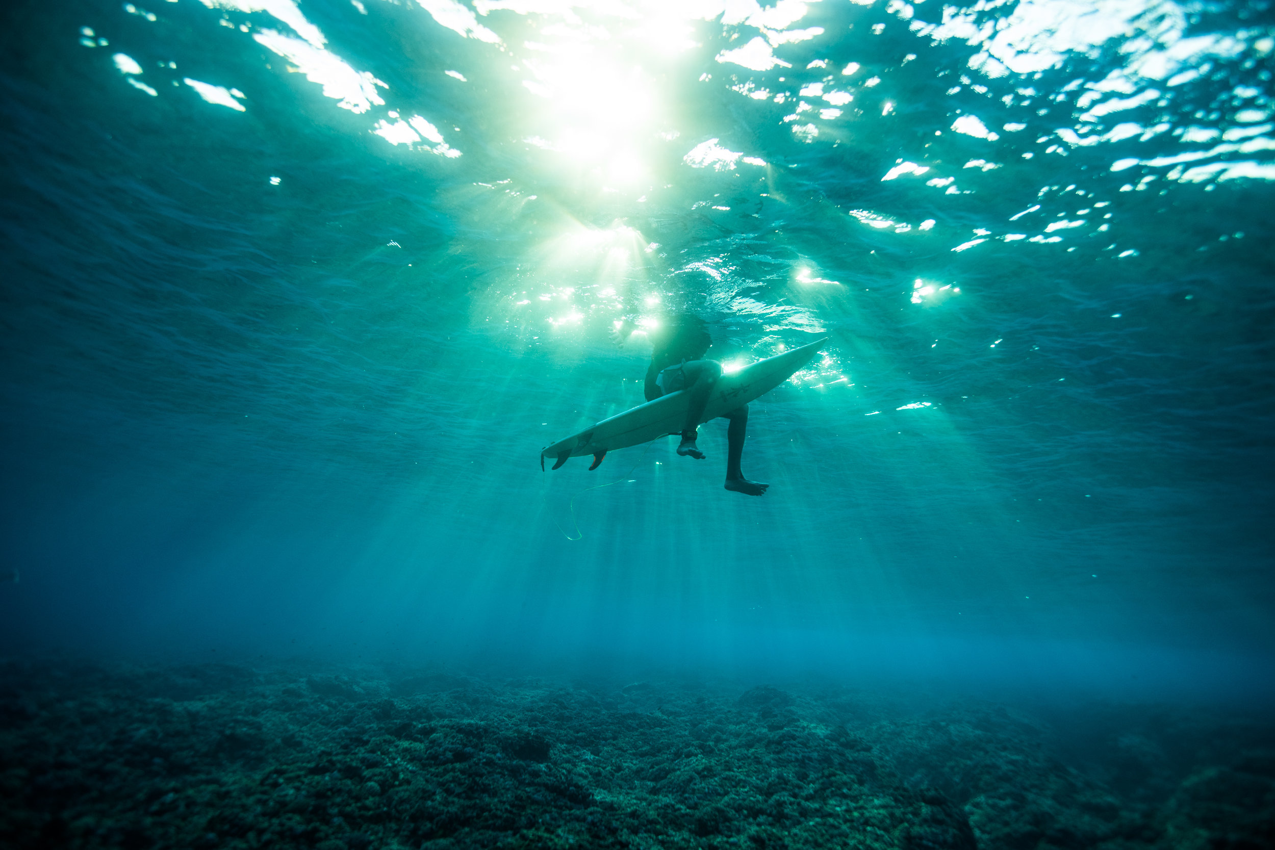 The ocean is a playground we need to protect.