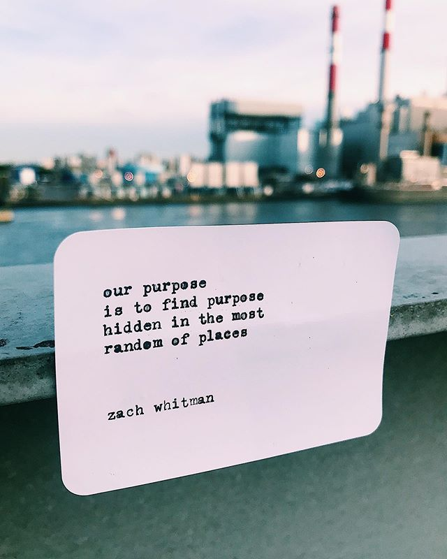our purpose is to find purpose  hidden in  the most random of places  ___________________________ tag, share & follow www.zachwhitman.nyc  fb | @zachwhitmanlive twtr | @wordsbyzach #zachwhitmanpoetry {astoria, new york}