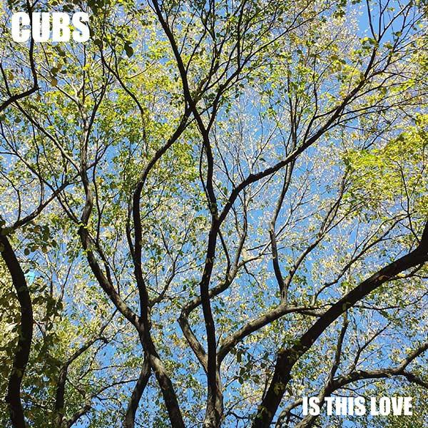 ARTIST:  CUBS   RELEASE:  IS THIS LOVE  SINGLE - RELEASED JANUARY 9, 2017
