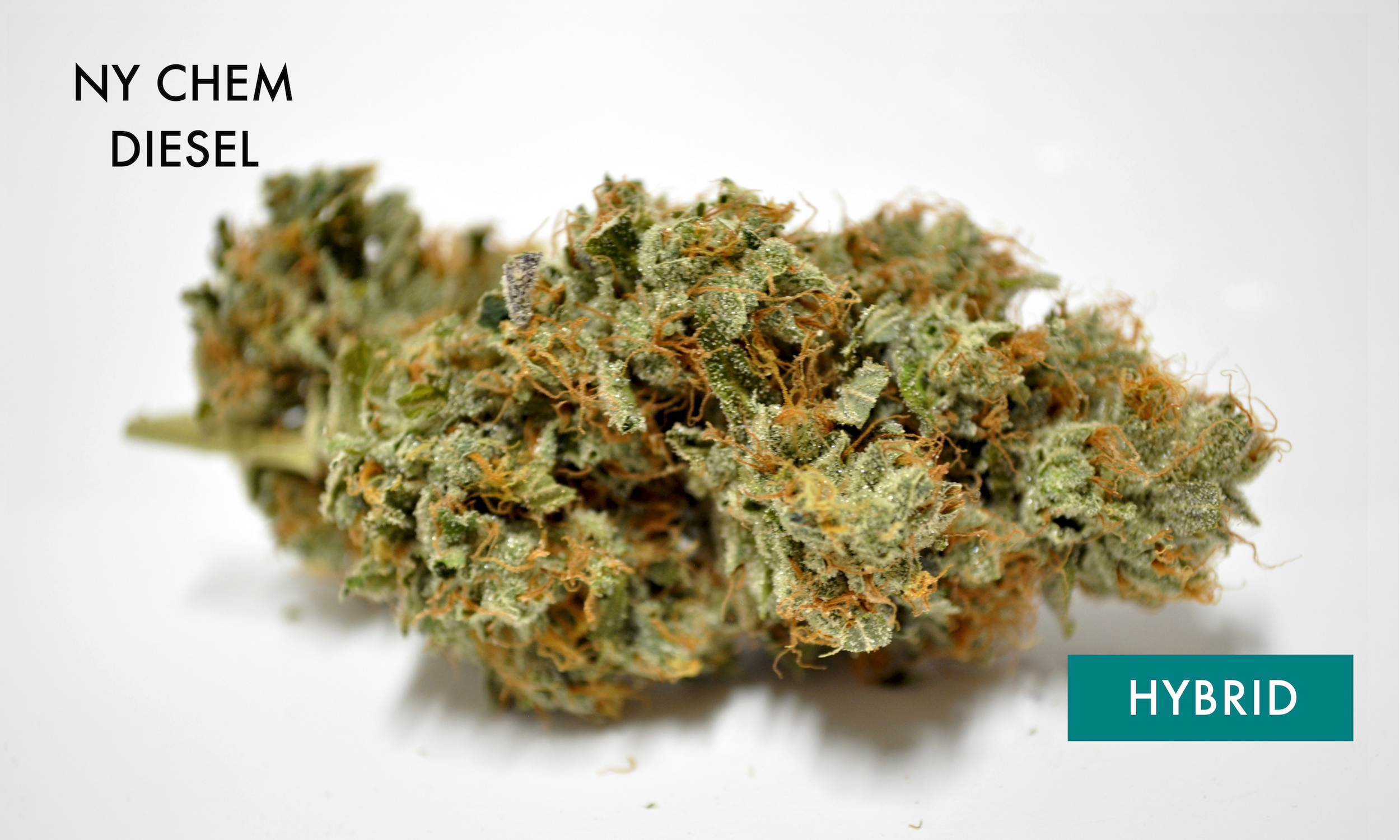 NY Chem Diesel - 60% IndicaNYC Diesel (or Soma Sour Diesel) is a 60% sativa-dominant cross between Mexican and Afghani landraces. This strain provides strong cerebral effects that ease into a deep, full-body relaxation over time. A pungent lime and grapefruit aroma is the mark of a high quality batch, like those that won this strain five Cannabis Cup trophies in the early 2000s. NYC Diesel's happy, talkative qualities make this hybrid a good choice for social activities and many anxiety-prone consumers praise it for its paranoia-free effects.