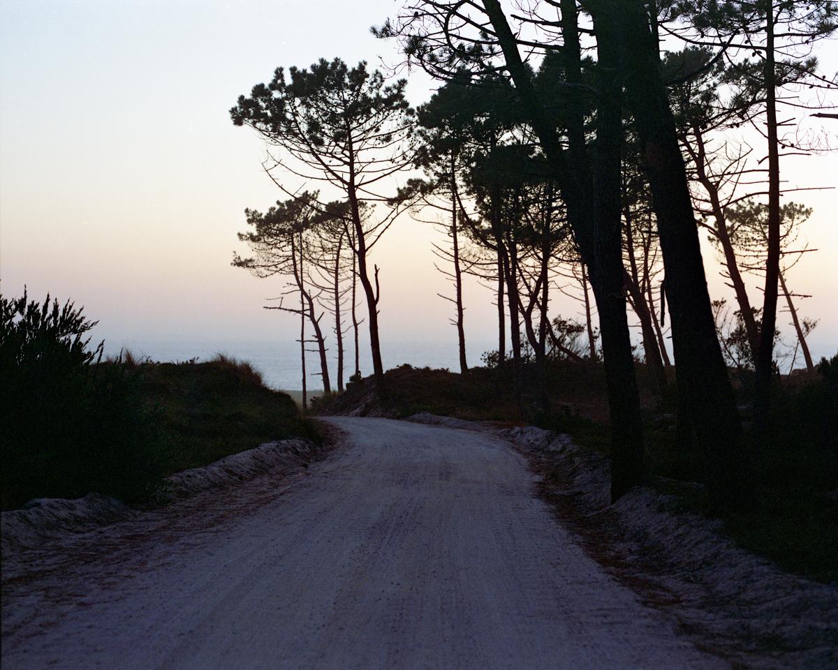coast road.jpg