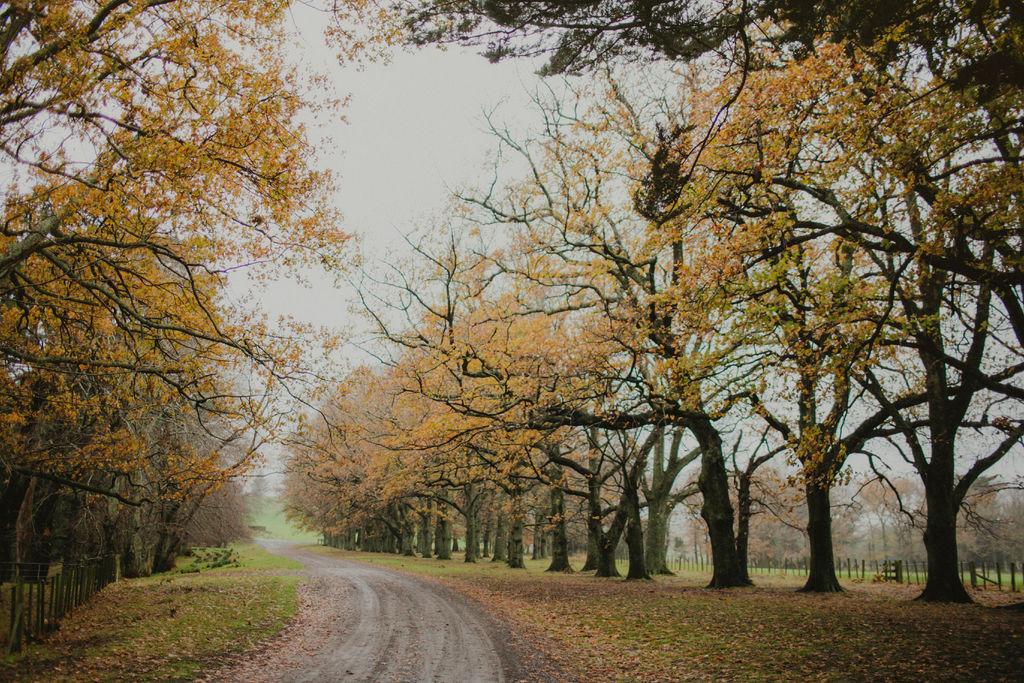 Driveway to Wallingford