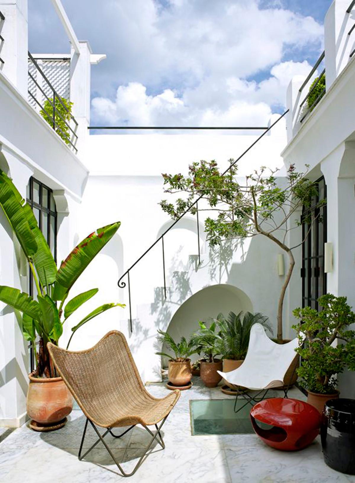 terras-inspiratie-groen-planten_2048x2048.jpg