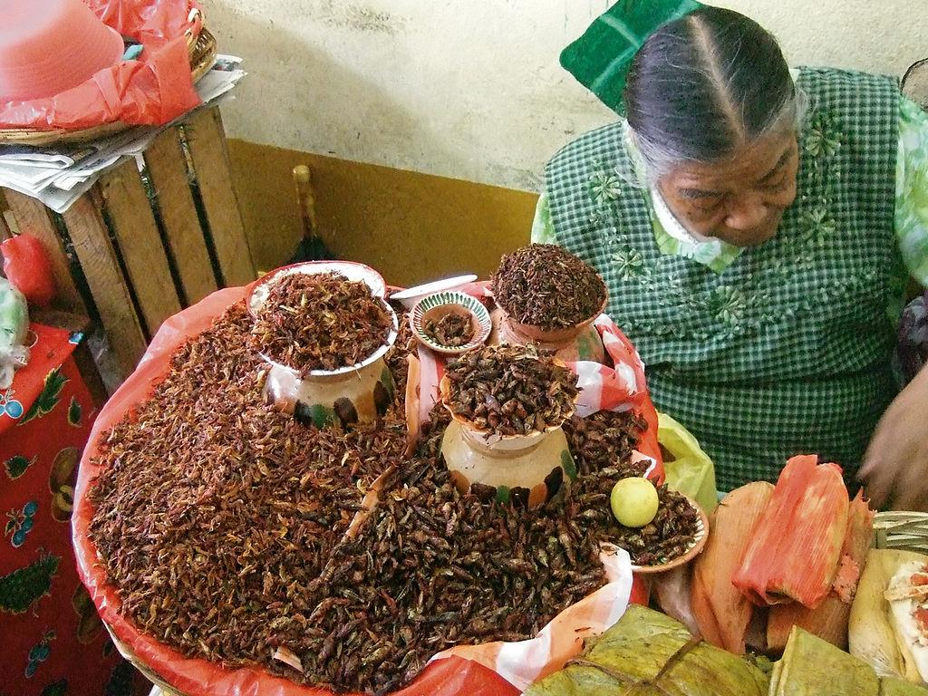 1024px-Chapulines.Markt.Oaxaca.jpg