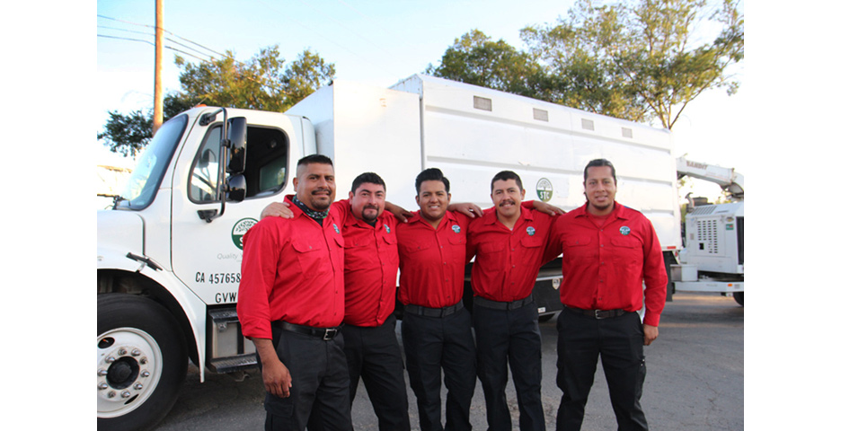 - Our crews are well-trained, skilled in what we do, honest, and committed to caring for your trees. We respect you and your property and appreciate the opportunity to provide outstanding tree care services. We have yet to find a job we cannot perform, and look forward to adding you to our list of loyal and satisfied clients.