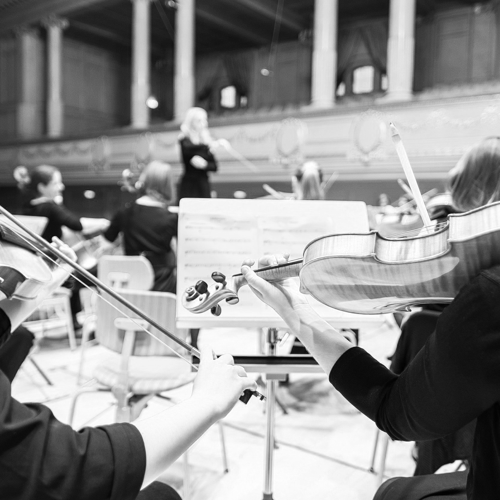 Final stages of conductor search - Auburn Reporter // 11.2.17Auburn Symphony Orchestra board members expect they are in the closing weeks of their search for a new conductor.