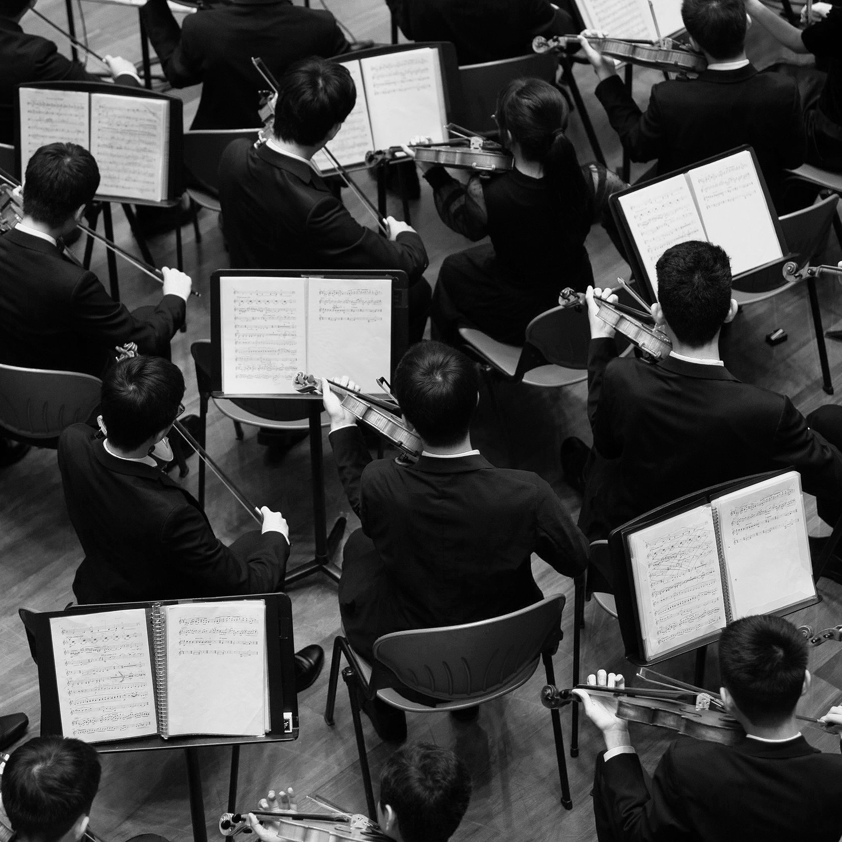 Auburn Symphony Presents: Pines of Rome - Kent Reporter // 10.3.18Auburn Symphony's new music director Wesley Schulz begins his tenure with the orchestra with the fall concert, Pines of Rome.