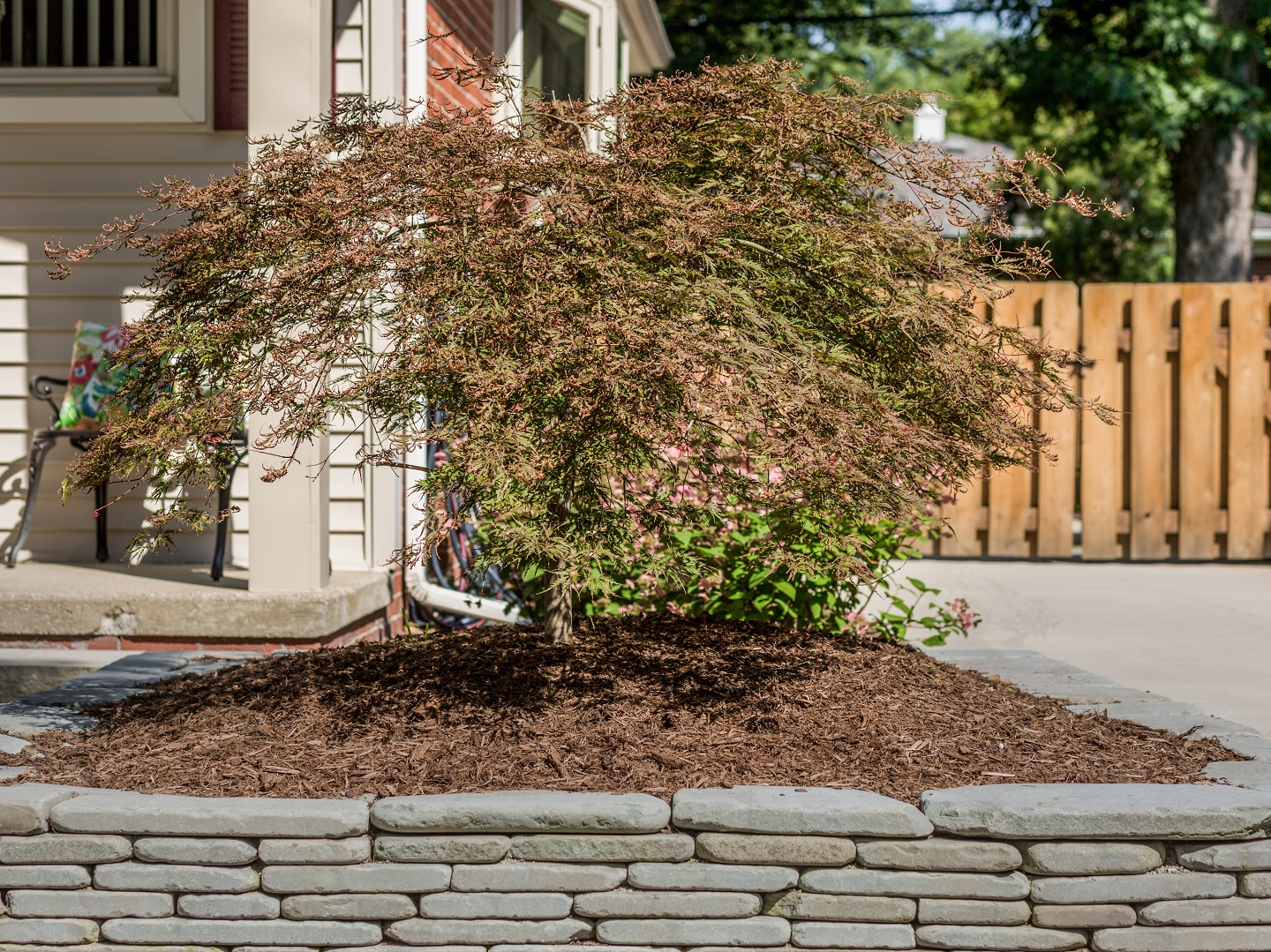 Stunning landscape design in West Bloomfield MI with tree and shrub planting