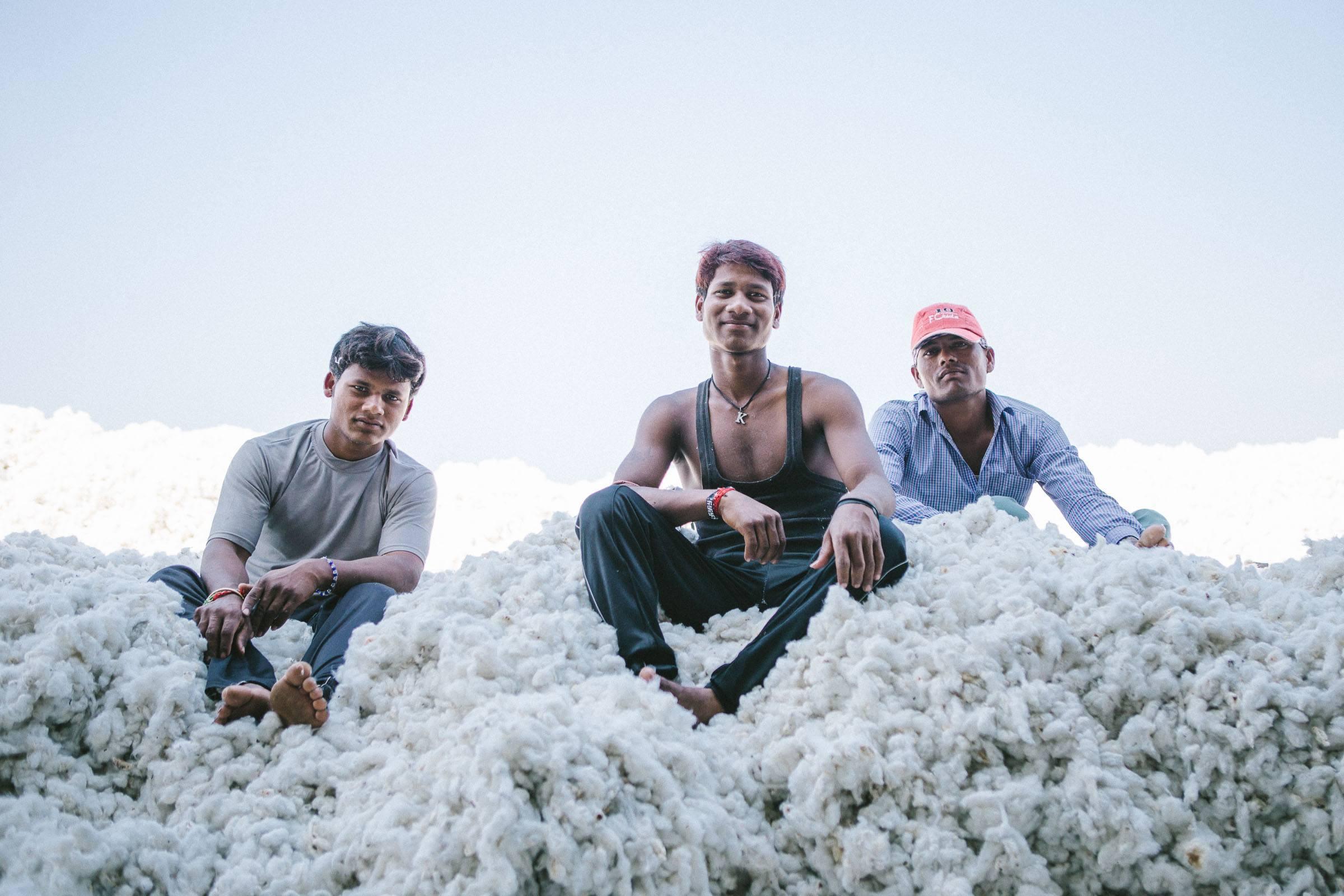 organic cotton pile.jpg