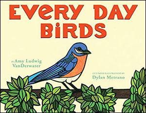 Dylan Metrano - Every Day Birds