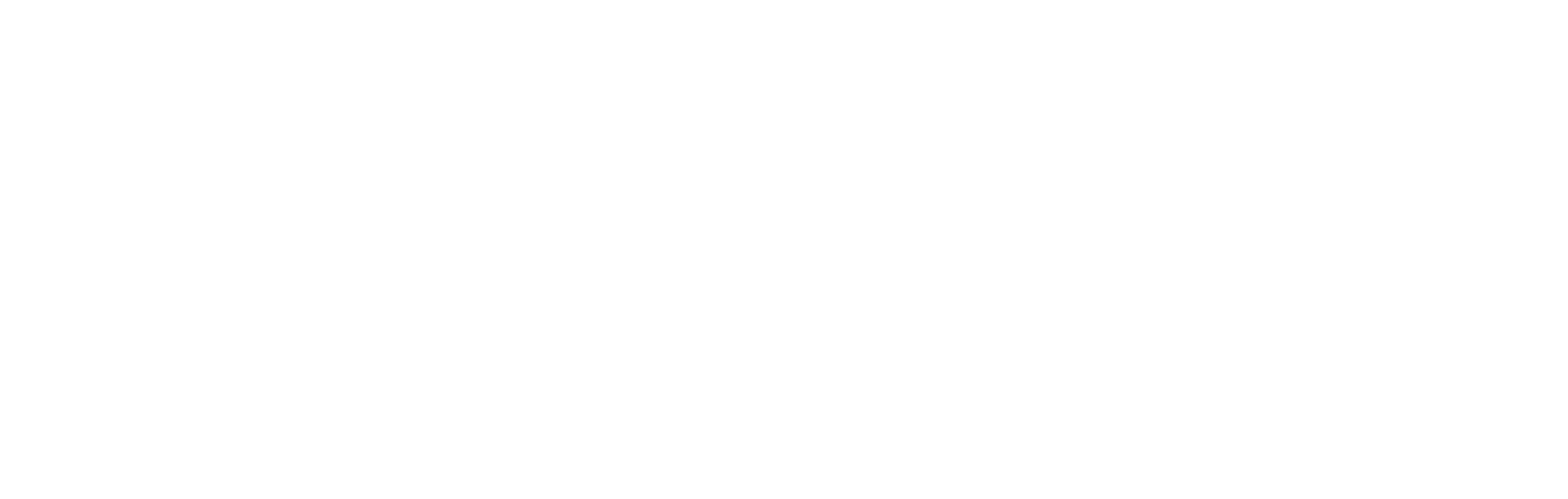 Professional Drone Pilot-logo-white.png