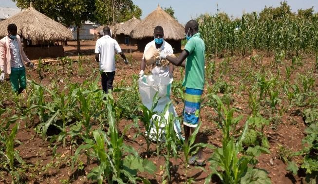 Picture SEQ Picture \* ARABIC 1: The youth of Destined youth group in Ofua 2 collecting plastic waste from gardens of refugee communities.