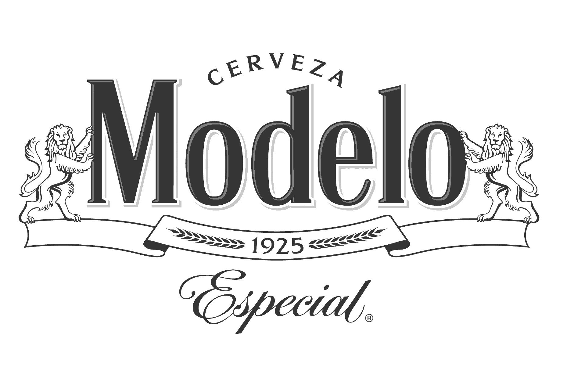 Modelo_Especial_Logo_Navy_2019.jpg