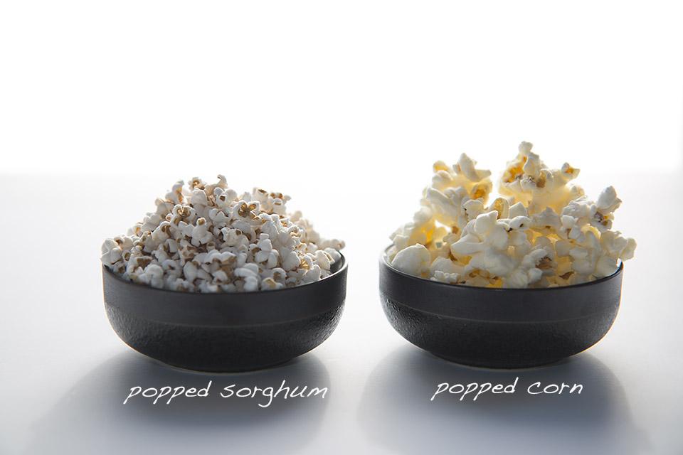 popped sorghum vs popcorn.png