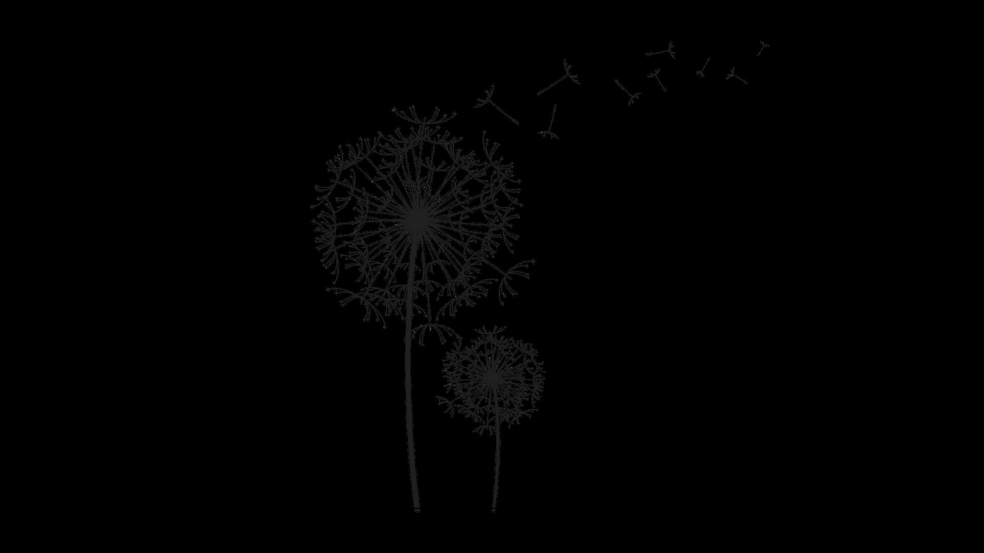 Copy of Dandelion, website images copy.png