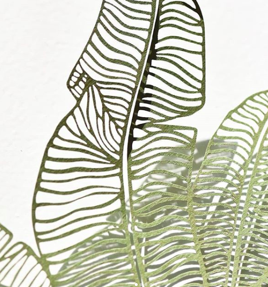 light and paperali - foliage