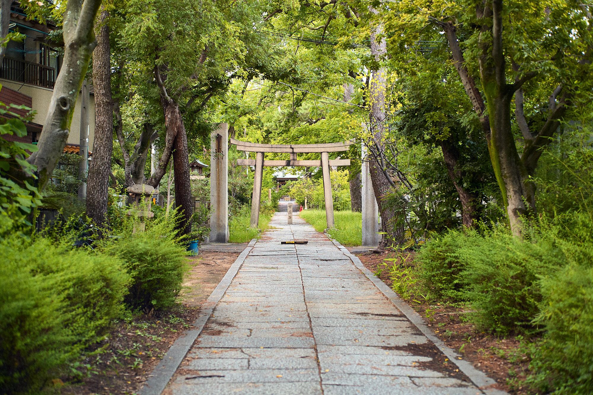 2019-09-13_Balade-Koshien_044.jpg