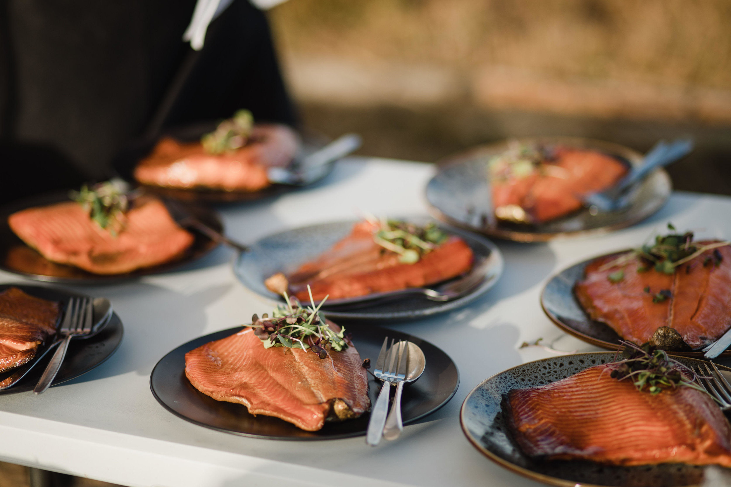 salmon-plates-5.jpg