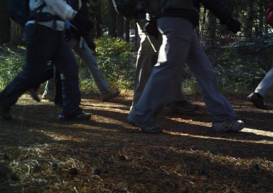 Over 1000 visitors enjoyed a Land Trust docent-led hike to Carpenter Valley during the summer and autumn of 2017. The wildlife cameras spotted quite a bit of human activity in the Valley between scientific staff and visitors. The Land Trust in partnership with The Nature Conservancy is committed to implementing a trail plan that doesn't negatively impact animal patterns.