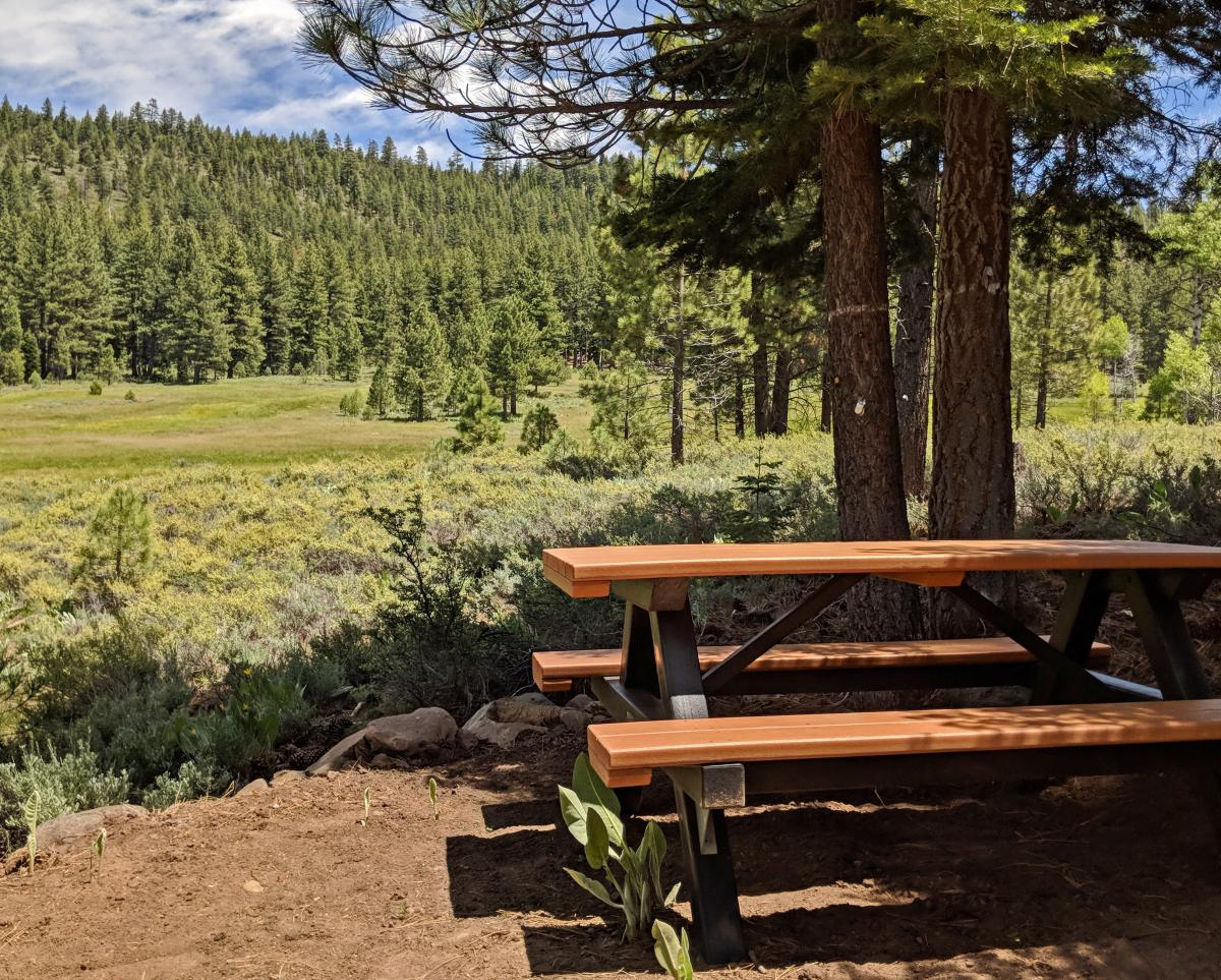 elizabethtown picnic table.jpg